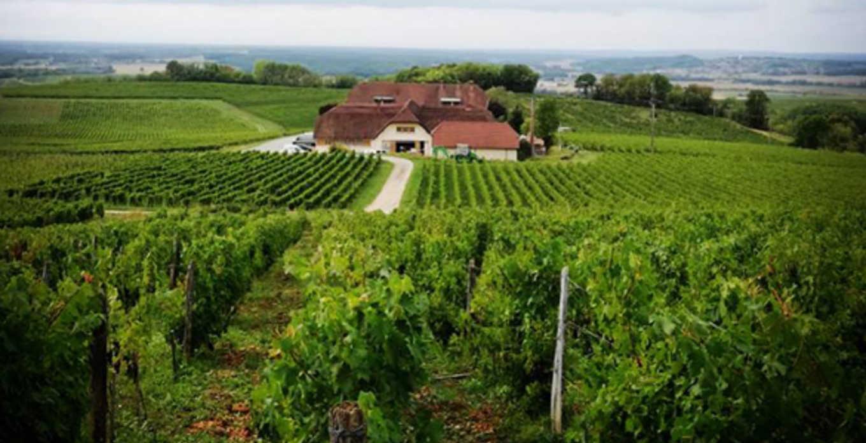 Chardonnay Domaine de la Pinte 2016