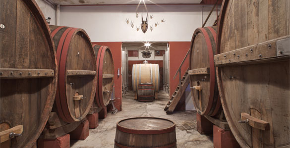 Verdicchio dei Castelli di Jesi Classico Riserva Villa Bucci 2015