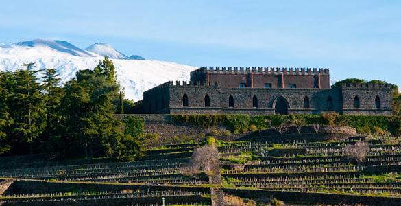 Castello Solicchiata vini online