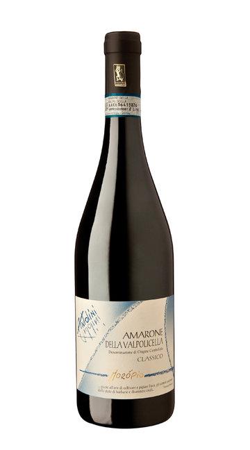 Amarone Classico 'Moropio' Antolini 2013