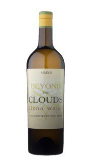 Beyond The Clouds Elena Walch 2015