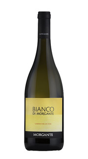 Bianco di Morgante 2017
