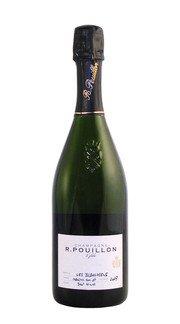 Champagne Nature 'Les Blanchiens' Roger Pouillon 2009