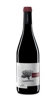 Etna Rosso 'Mofete' Palmento Costanzo 2015
