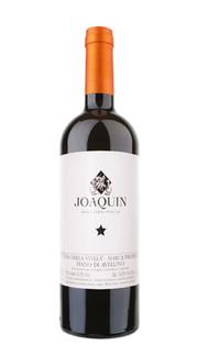 Fiano di Avellino 'Vino della Stella' Joaquin 2016