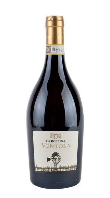 Gavi 'Ventola' La Bollina 2016