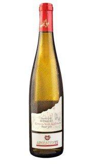 Pinot Grigio 'Cuvée du Vicus Romain' Aimé Stentz 2015