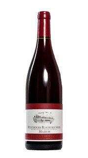 Pinot Nero 'Mazzon' Bruno Gottardi 2015