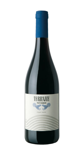 Pinot Nero 'Terrazze' Mazzolino 2017