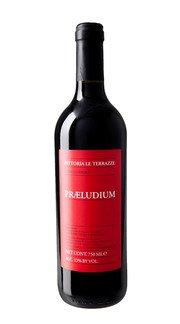 Rosso Conero 'Praeludium' Fattoria Le Terrazze 2017