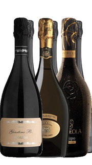 Prosecco Sparkling and Fresh Personality (6bt)