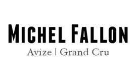 Fallon Michel